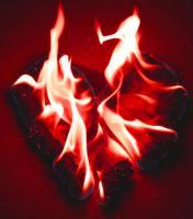Über Liebe, Lust & Frust